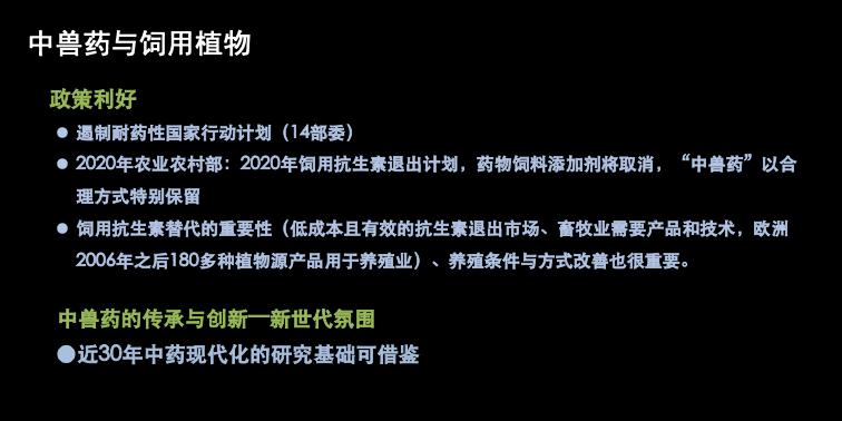幻灯片14.png