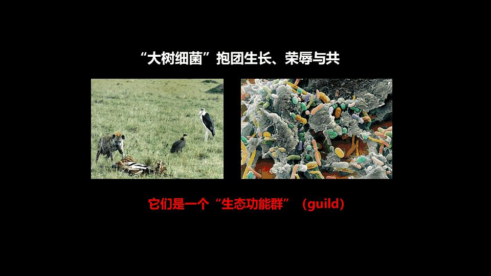幻灯片19_ys.PNG