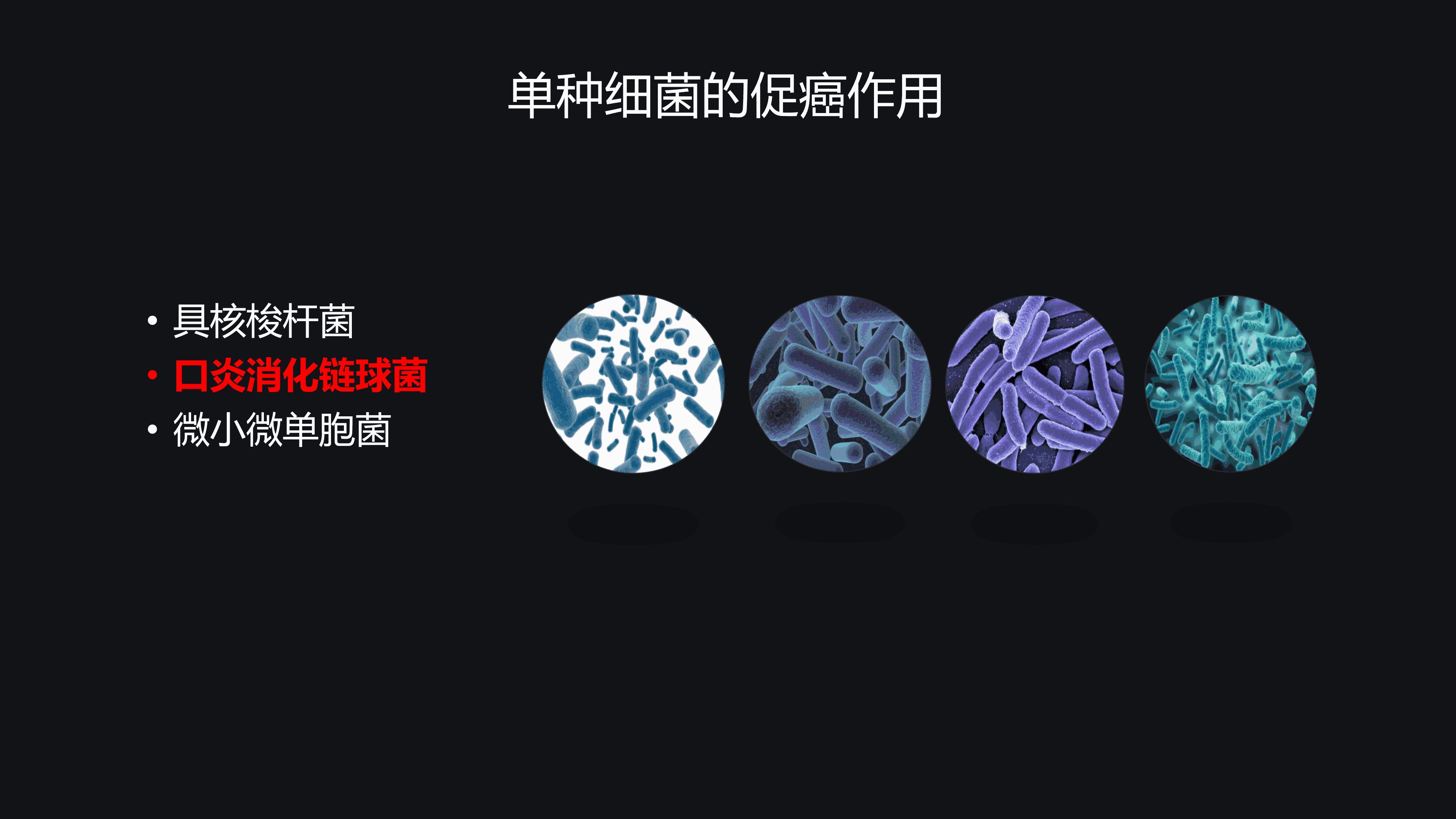 肠道菌群与大肠癌-于君(修改版)-Re3 - 副本_18_ys.png