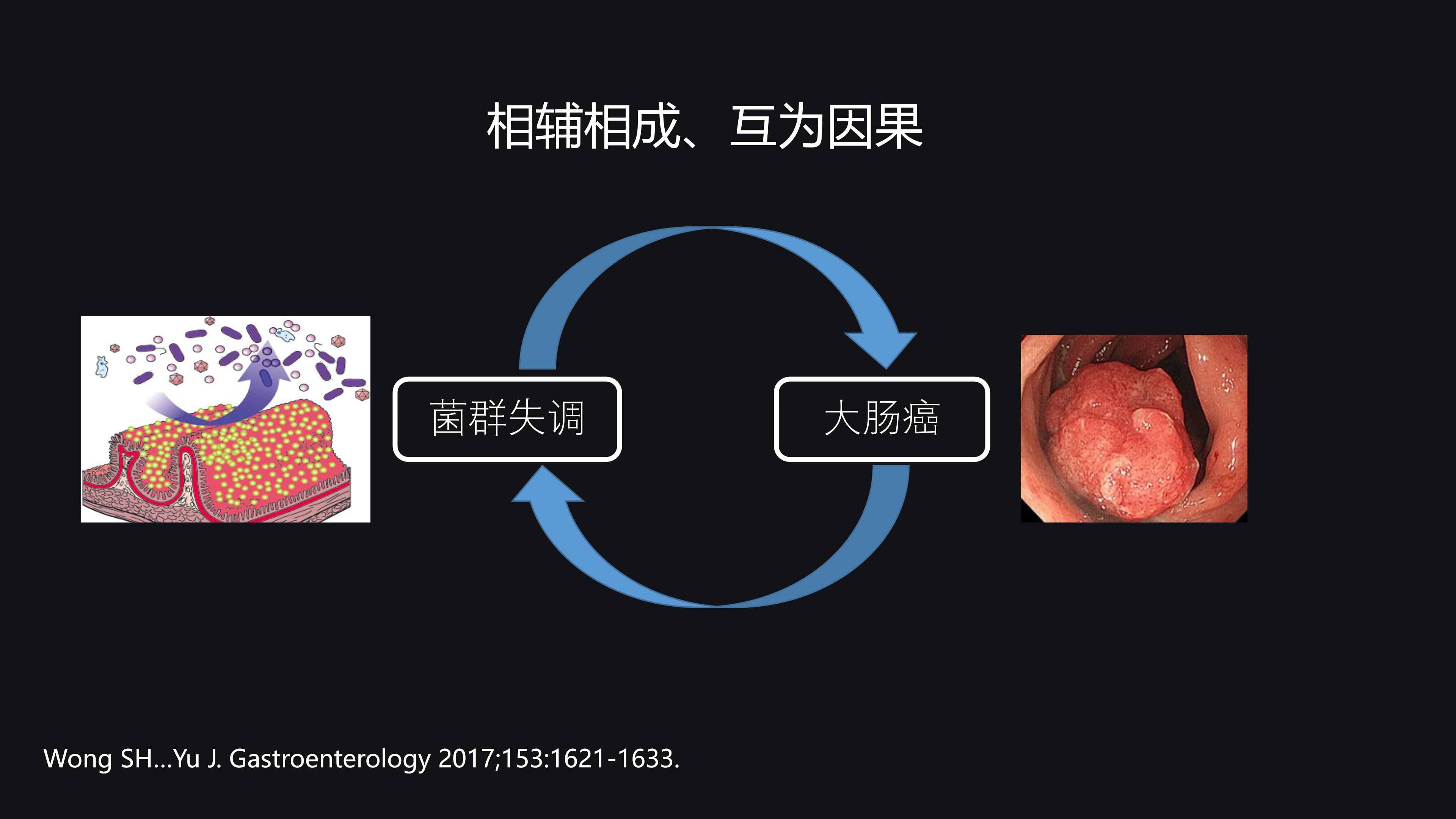 肠道菌群与大肠癌-于君(修改版)-Re3 - 副本_20.png