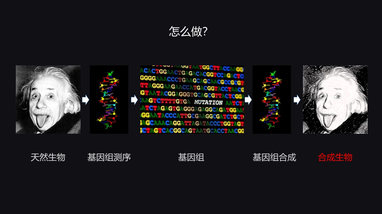 幻灯片21.JPG
