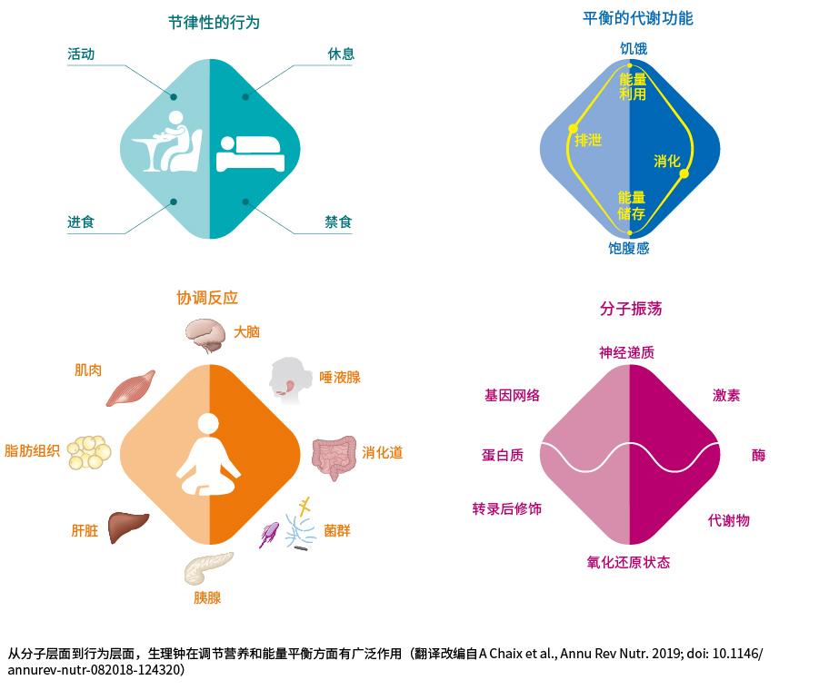 肠道产业11-04-03.jpg