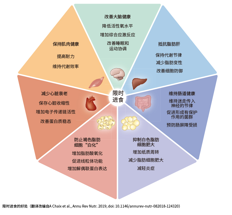 肠道产业11-04-04.jpg