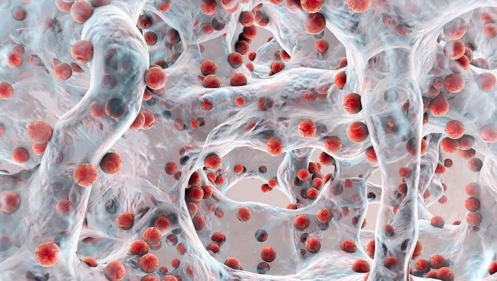 美容院的护肤品好_益生菌让皮肤变好?微生物组高居美容护肤创新驱动因素榜首!